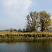 Kopačko jezero je najveće, a Sakadaško najdublje jezero u Kopačkom ritu. Jezera su međusobno povezana s Dravom i Dunavom mrežom prirodnih i umjetnih kanala