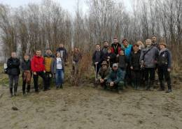 Reintrodukcija riječnih biljaka uz Dravu/Reintroduction of riverine plants within the Drava Life project