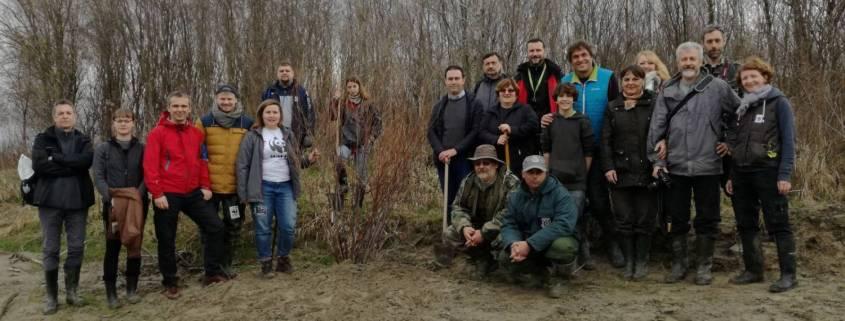 Reintrodukcija riječnih biljaka uz Dravu/Reintroduction of riverine plants within the Drava Life project